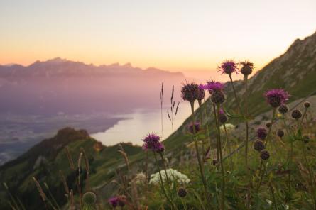 Elena Goldbach Fotoillusionistin Travel Schweiz